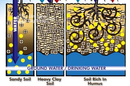Tác dụng của các chất hữu cơ và Axit humic trong phân bón đối với các loại đất