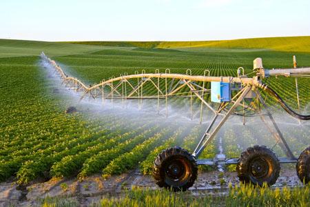 Ứng dụng công nghệ cao trong nâng cao giá trị gia tăng  trong chuỗi giá trị nông sản ở Việt Nam