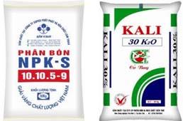 Phân bón NPK-S và Kali