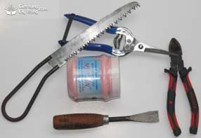 Các loại dụng cụ dùng để tạo dáng, thế cho cây quất cảnh