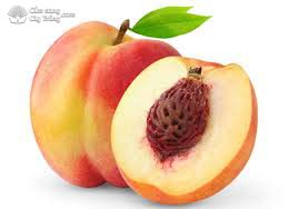 peach seeds - hạt đào
