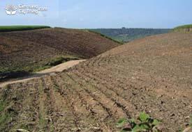 Kỹ thuật làm đất ở vùng đất đồi