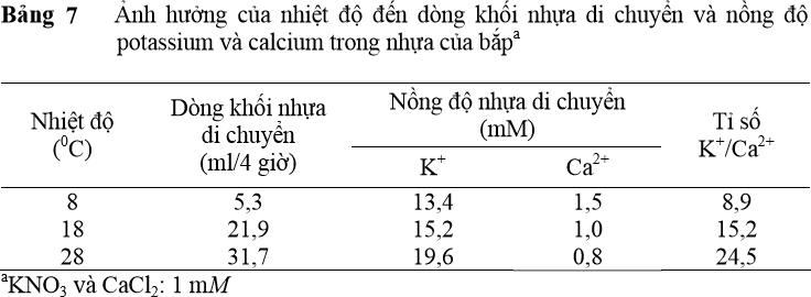 Ảnh hưởng của nhiệt độ đến dòng khối nhựa di chuyển và nồng độ potassium và calcium trong nhựa của bắpa