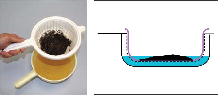 Bộ dụng cụ khay Whitehead để tách tuyến trùng