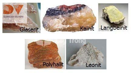 Các loại khoáng chất có chứa Magie