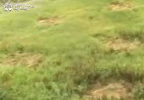 Các vị trí hố đã đào đất