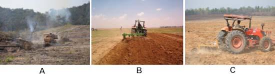 Chuẩn bị đất trồng cao su