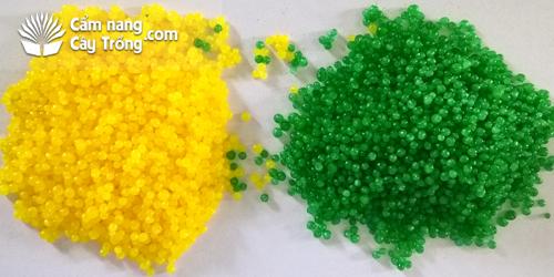 Công nghệ sản xuất đạm vàng và đạm xanh, công nghệ bọc đạm