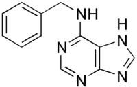 Công thức cấu tạo của Benzylaminopurine (6-BA)