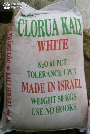 Kali Clorua loại màu trắng
