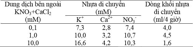 Tương quan giữa nồng độ ion trong dung dịch bên ngoài, nồng độ ion trong nhựa và dòng khối nhựa di chuyển