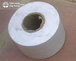 Dây nilon cắt thành cuộn để buộc vết khoanh cành