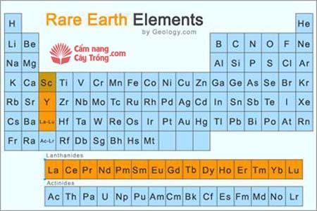Vị trí các nguyên tố vi lượng đất hiếm trong bảng tuần hoàn Mendeleev