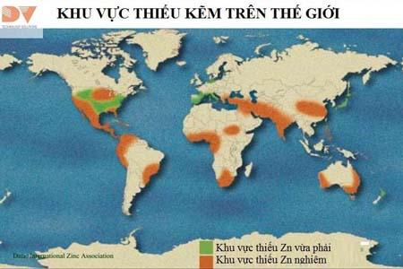 Các khu vực thiếu kẽm trên thế giới