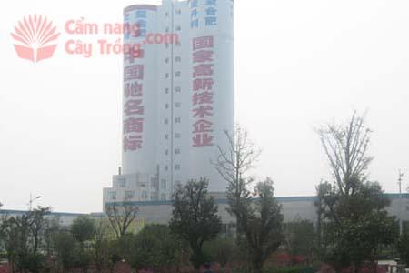Một nhà máy phân bón tháp cao của Trung Quốc (tháp đôi)