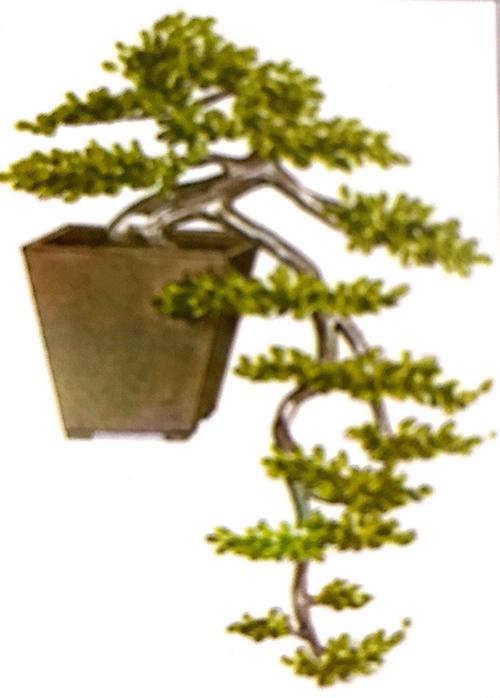 Phong cách dáng thế cây mọc rũ hoặc còn gọi là thác đổ