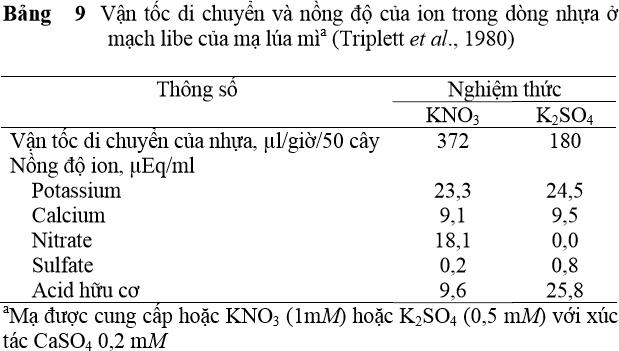 Vận tốc di chuyển và nồng độ ion